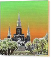 St. James Cathedral New Orleans Wood Print