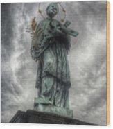 St John Nepomuk Wood Print