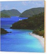 St. John's Paradise Wood Print