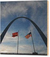 St Louis Arch Metal Gateway Landmark Wood Print