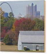 St Louis Skyline From Illinois Wood Print