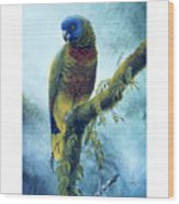 St. Lucia Parrot - Majestic Wood Print