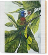 St. Lucia Parrot And Fruit Wood Print
