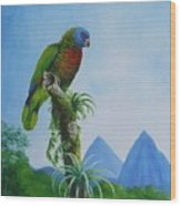 St. Lucia Parrot And Pitons Wood Print