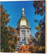 St Mary Atop The Golden Dome Of Notre Dame Wood Print
