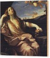 St Mary Magdalene 1632 Wood Print