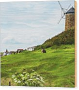 St Monans Windmill Wood Print