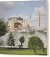 St Sophia Mosque And Fountain In Park Wood Print