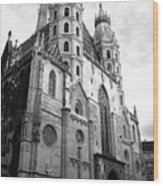 St Stephens Cathedral Vienna In Black And White Wood Print