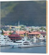 St. Thomas Us Virgin Islands Wood Print