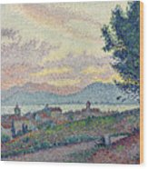 St Tropez Pinewood Wood Print