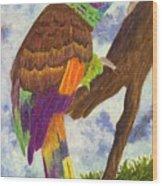 St. Vincent Parrot Wood Print