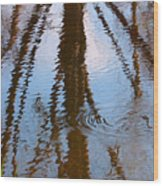 St. Vrains Creek Reflection Wood Print