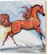 Staceys Arabian Horse Wood Print