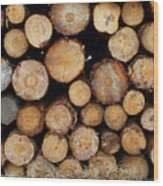 Stacked Timber Two Wood Print