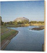Stadium And Park Panorama Bleach Bypass Wood Print