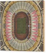 Stadium  Wood Print