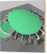 Stadium Model Wood Print