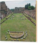 Stadium Of Domitian Wood Print