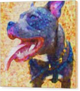 Staffordshire Bull Terrier In Oil Wood Print