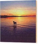 Staffordshire Bull Terrier On Lake Wood Print by Michael Tompsett