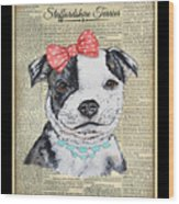 Staffordshire Terrier-jp3857 Wood Print