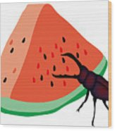 Stag Beetle Is Eating A Piece Of Red Watermelon Wood Print
