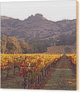 Stags Leap Wine Cellars Napa Wood Print