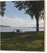 Stahli Park Wood Print