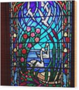Stained Glass Beauty #20 Wood Print