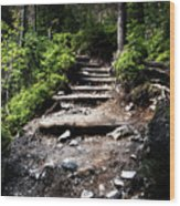 Stair Stone Walkway In The Forest Wood Print