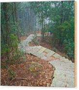 Stairs Down Mountain Wood Print