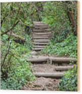 Stairs Going Up Hillside Wood Print