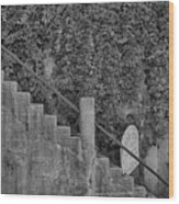 Stairs In Black And White Wood Print