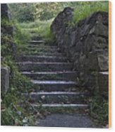 Stairs To . . .      Wood Print by Murray Bloom