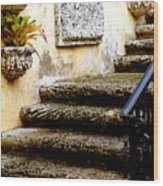 Stairs To Life Wood Print