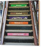 Stairs To The Chicago L Wood Print