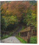 Stairs To The Graveyard Wood Print