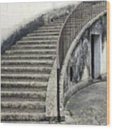 Stairs To Underground Wood Print