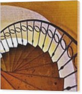 Stairway In Cabo Wood Print