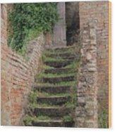 Stairway Less Traveled Wood Print