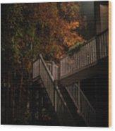 Stairway To Autumn Leaves Wood Print