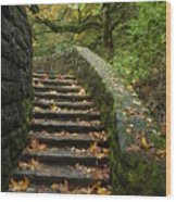 Stairway To Fall Wood Print