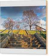 Stairway To Federal Hill Wood Print
