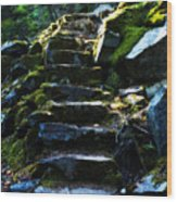 Stairway To Heaven Wood Print