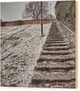 Stairway To Spring Wood Print
