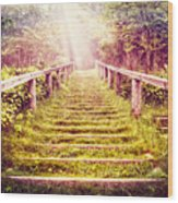 Stairway To The Garden Wood Print