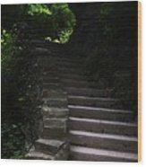 Stairway Watkins Glen 1  Wood Print by InTheSane DotCom