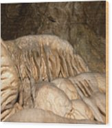 Stalactite Formation In Karst Cave Wood Print