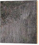 Stalk Wood Print